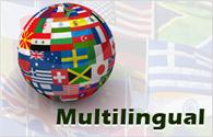 Multilingual Sites: website developement